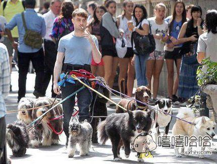 """""""哈利波特和他的神奇动物们"""""""