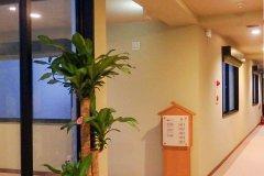 日暮里山葵日式旅馆&旅舍(Ryokan&Hostel Wasabi Nippori)