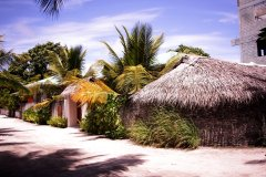 马尔代夫夏日之荫旅馆(Summer Shade Maldives)