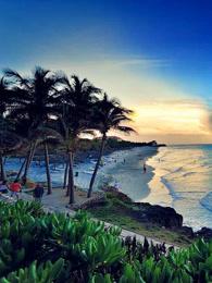 野性加勒比