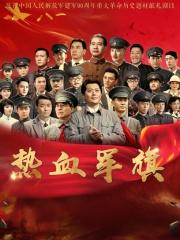 热血军旗DVD
