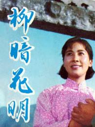 柳暗花明(1979)